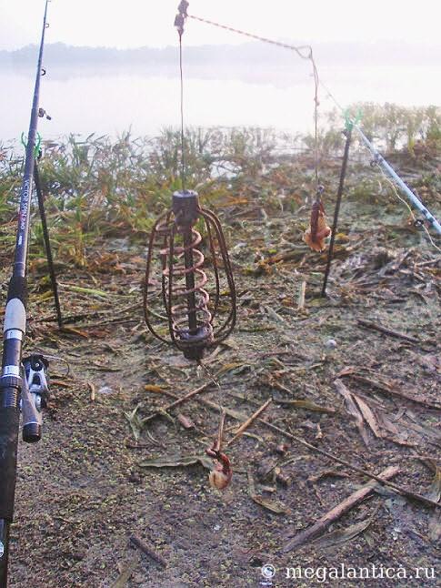 рыбалка на донную снасть пружину