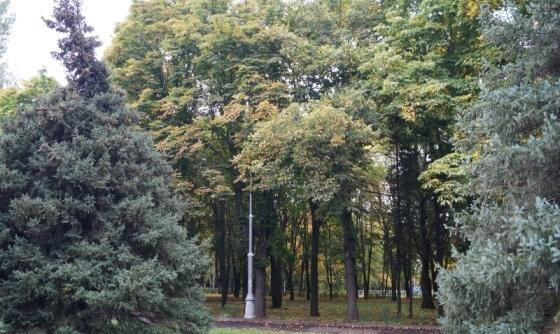 Осенний парк романтичен и загадочен