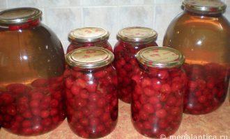 Как приготовить вишневый компот - рецепт с фото