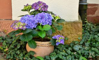 Изготовление и оформление цветочных горшков