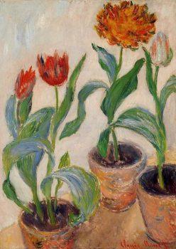 Моне, тюльпаны