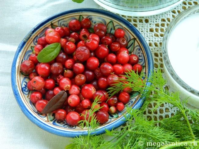 Салат микс с ягодами - рецепт с фото